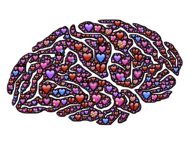 brain-619060_640